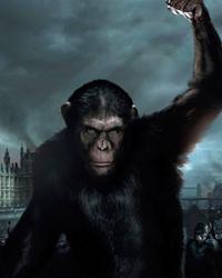 Honest 2014 Movie Titles Trivia Quiz.