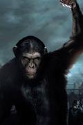 Honest 2014 Movie Titles Trivia Quiz
