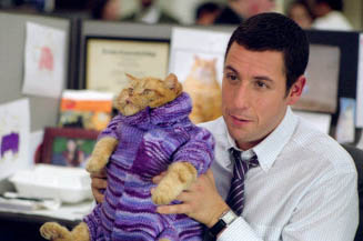 Here's a photo of Sandler just prior to his arrest for animal cruelty.