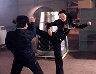 Kelly Hu rejects Jet Li but all he notices is how limber she is.