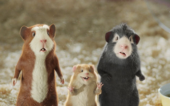They can't believe there's a movie about talking guinea pigs, either.