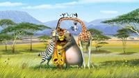 DreamWorks' evolution into zoo porn was inevitable.