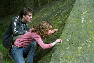 Harry and Hermione are still hanging around.