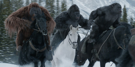 When apes and horses join together, the world comes to an end.
