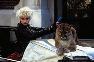 Madonna would find herself linked with the cougar again, later in life.