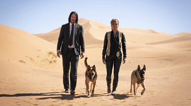 John Wick, Halle Berry, and Halle Berry's dogs.