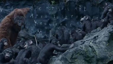 The state of ape education is puts them well ahead of the United States.